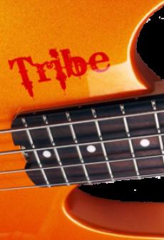 Tribe bass headless orange